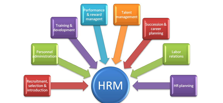 what your performance management system needs Hr-surveycom performance management systems: are fair  what is a performance management system performance management solutions designed to meet your needs.